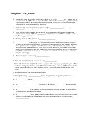 Phosphorus Cycle Questions