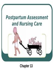 Postpartum Assessment and Nursing Care_Spring10 ~ Ch 13(1) (1).pptx