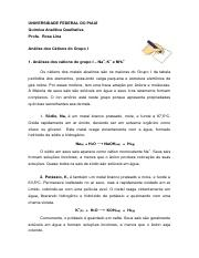 An┬аlise dos C┬аtions do Grupo I.pdf
