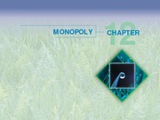 Chapter 12 - Monopoly