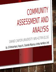 Community Assessment and Analysis Powerpoint presentation 1