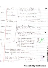 Pituitary and Thyroid Notes