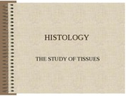 HISTOLOGY (LECTURE NOTES)