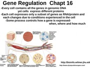 11 Gene Regulation Prokaryotes-not on exam II