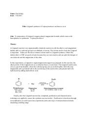 OW  Grignard Synthesis.docx