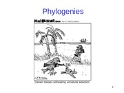 6 - Intro_to_Phylogeny