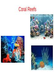 Chapter 15 Part 2 Corals 1 student