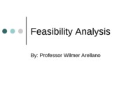 Feasibility AnalysisSpring2011