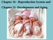 CH 16: Reproductive Systems and CH 21 Development and Aging