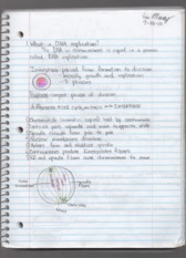 Lecture 5 Notes Biology