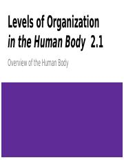 Levels of Organization 2.1: Human Body