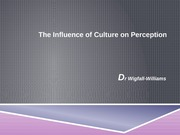The Influence of Culture on Perception