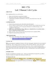 Lab 3 - Life Cycles