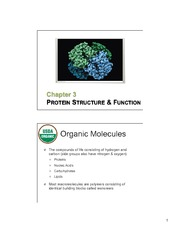 03 ProteinStructure&Function slides