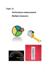 Topic 12 Performance measures- multiple measures