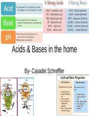 Acids & Bases in the home.ppt