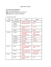 Printables Levels Of Organization Biology Worksheet bio 1a general biology spring 2015 cell cycle amp division 6 pages structural organization worksheet answers