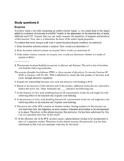 study questions 8