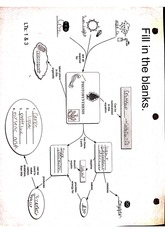 Printables Photosynthesis Diagrams Worksheet Answers 11 5 worksheet 73 list ma a iv g 0 7 is the following 1 pages photosynthesis diagram