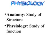 Intro to physio