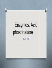 Enzymes student 2016.ppt