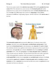 The nervous system is made of the central nervous system notes.pdf
