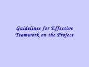 Guidelines for Effective Teamwork on the Project