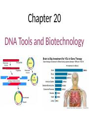 Chapter 20 DNA Tools and Biotechnology