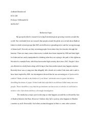 Individual Reflection Paper.docx