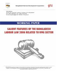 Working_Paper__Labour_Law_20061