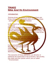 nike and its environment.doc