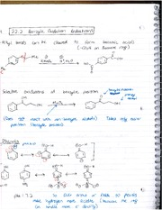 Benzylic Oxidation Reductrons