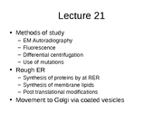 Lecture 21 Internal Membrane Systems