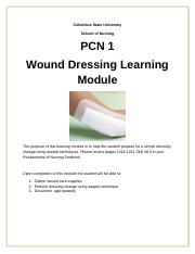 Wound%20Dressing%20Module.docx
