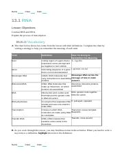 13.1 WS- Answers.doc - Answers The Role of RNA 1 Complete ...