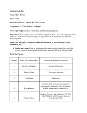 SCIE207_Lab4_Part1_worksheet.docx