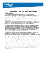 Business-Plan-for-an-Established-Business-