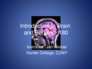 1 Introduction to Brain and behavior