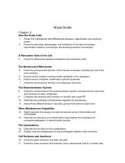 Study Guide chapter 4& 5.doc