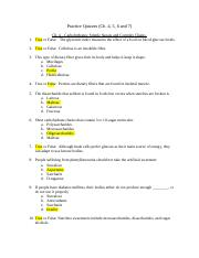 Practice Quizzes (Ch. 4, 5, 6 and 7)