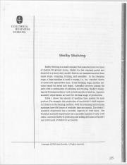 executive summary of shelby shelving