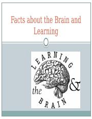 Facts about the brain and Learning