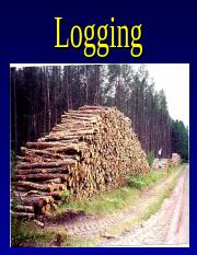Logging.ppt