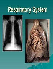 Bi 117 Respiratory Anatomy Introduction(1).ppt