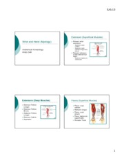 Wrist and Hand (Myology).ppt