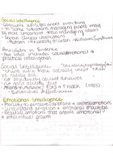 Theories of Hot Intellegence Notes