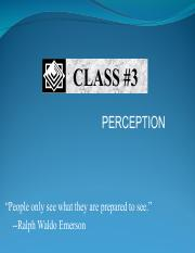 perception_13.pdf