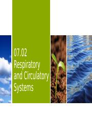07.02 Respiratory and Circulatory Systems_Edit.pptx