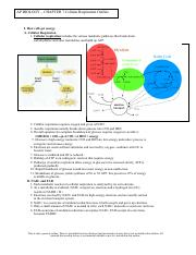 L7 CH 9 NOTES cellular respiration