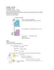 A&P class notes 5